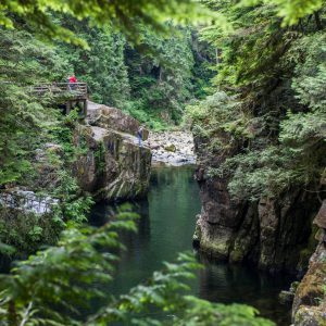 Palisades Trail, Capilano River Regional Park, Vancouver BC