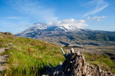 Mt St Helens National Monument, WA