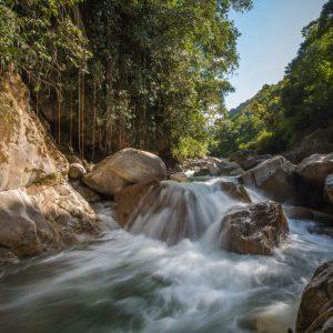 El Tamá National Park,  – Buy Code VEN0006