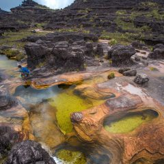 Mount Roraima, Canaima National Park – Buy Code VEN0026