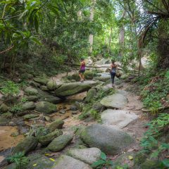 Hike in Tayrona National Park – Buy Code COL0012