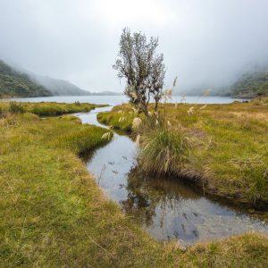 Laguna Negra, Sierra Nevada National Park – Buy Code VEN0013