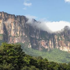 Tepui in Canaima Nationa Park – Buy Code VEN0023