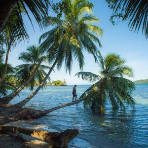 Bocas Del Toro NP
