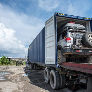 Sooty loaded in its container to be shipped to Colombia