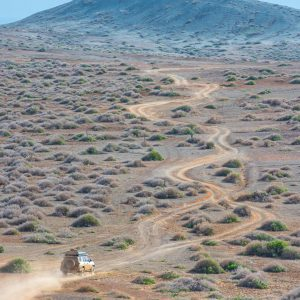 Sooty in La Guajira – Buy Code COL0018
