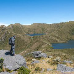 Parque Nacional Chingaza – Buy Code COL0038