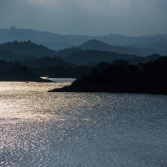 Guatape Reservoir – Buy Code COL0042