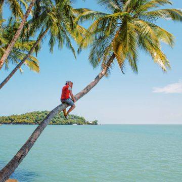 The Guianas